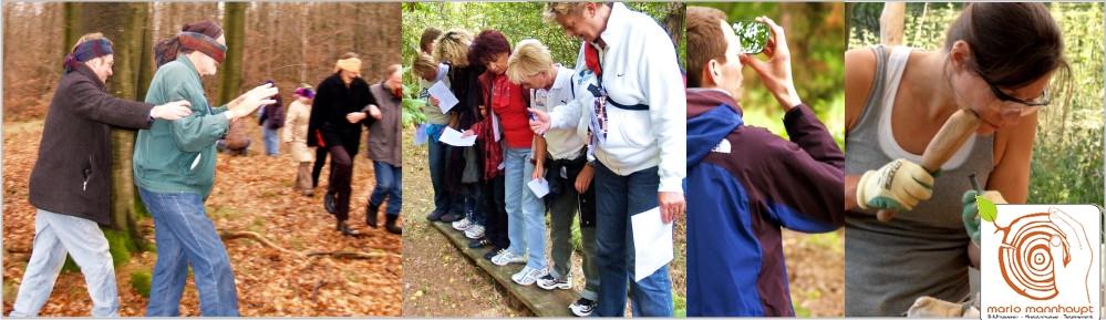 Kreative Rahmenprogramme - Teamevent in der Natur