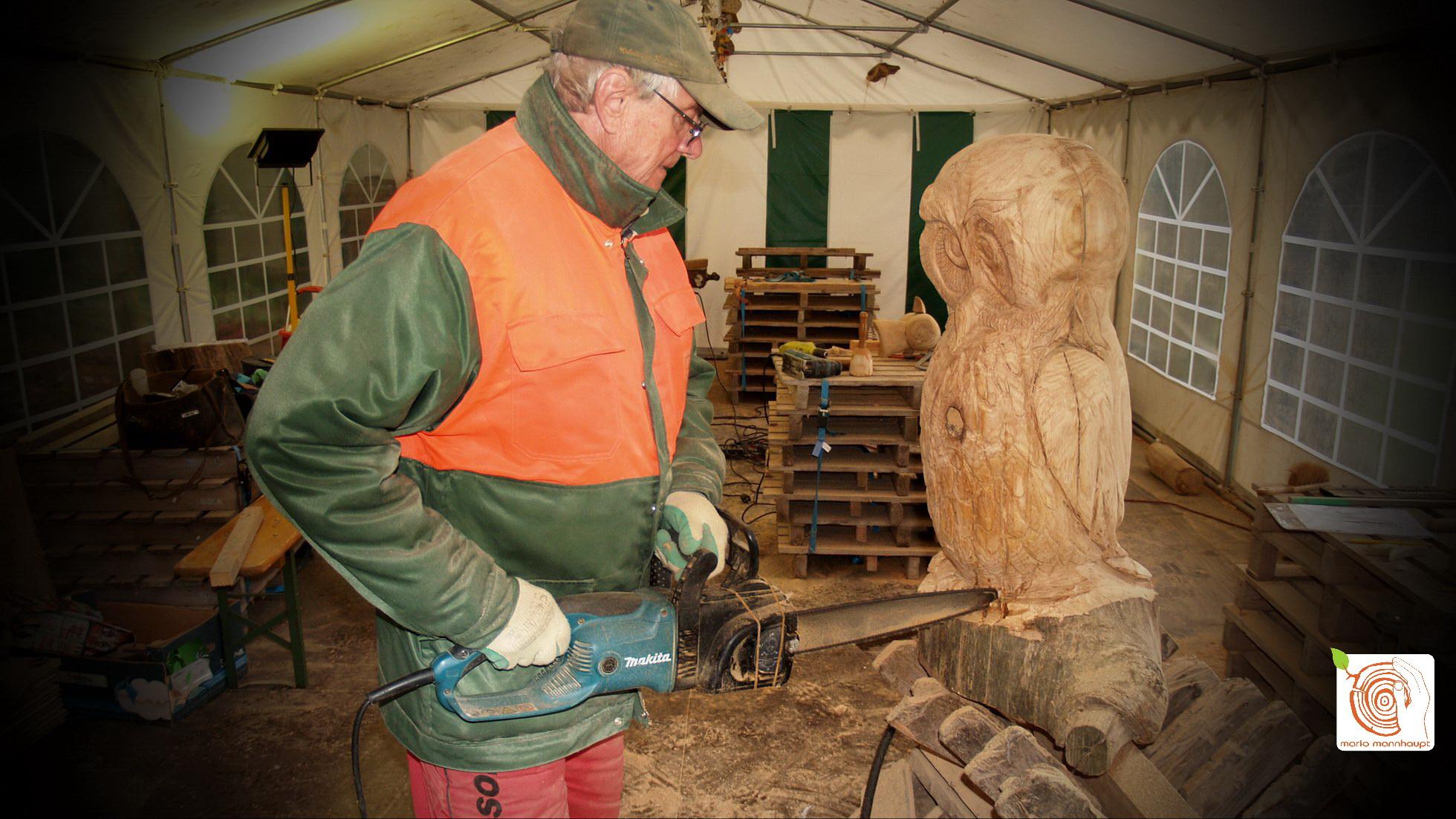 Carving mit der Kettensäge lernen